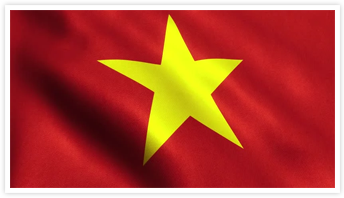 Simple Tax Guide for Americansin Vietnam