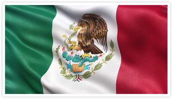 Simple Tax Guide for Americans in Mexico